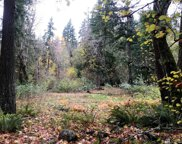 24000 SE 238th St, Maple Valley image