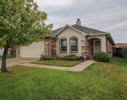 12641 Pricklybranch Drive, Fort Worth image