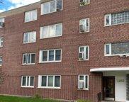7202 Oak Avenue Unit #2NW, River Forest image