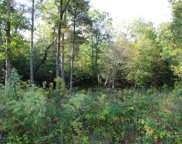 Mountain Preserve Pkwy, Crab Orchard image