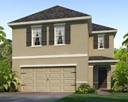 3507 Winterberry Lane, Valrico image