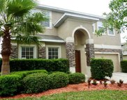 521 Doverton Lane, Debary image