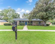 1695 PAPAYA CT, Orange Park image