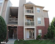 1703 ASCOT WAY Unit #D, Reston image