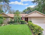 2737 Saint Cloud Oaks Drive, Valrico image