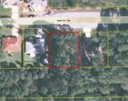 44 Smith Trl, Palm Coast image