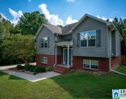 703 Isbell Rd, Odenville image