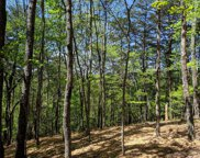L163 Cohutta Mountain Rd, Blue Ridge image