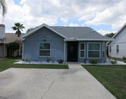 13908 Orange Dale Place, Tampa image