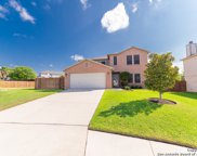 104 Willow Hl, Cibolo image