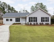 10035 Burning Bush Ridge Court, Leland image