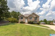 160 Pine Springs Rd, Odenville image