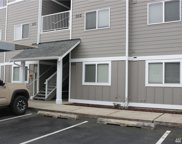 1691 SW Mulberry Place Unit F102, Oak Harbor image