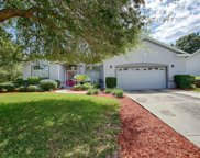 4743 Sawgrass Lake Circle, Leesburg image