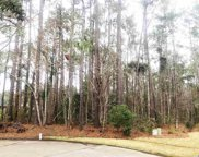 103 Lumber Ct., Myrtle Beach image