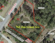 762 Jim Grant Avenue, Sneads Ferry image