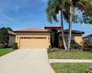 5819 Hidden Falls Lane, Apollo Beach image