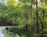 000 Wilderness  Road, Tryon image