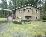 12418 95th St Ct, Anderson Island image