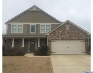 340 Lacey Ave, Alabaster image