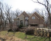 426 West Haleys Hill Court, Palatine image