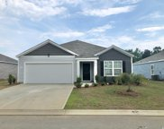 363 Spruce Pine Way, Conway image