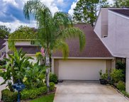4224 Hartwood Lane Unit 1203, Tampa image