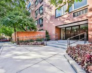1143 South Plymouth Court Unit 507, Chicago image