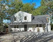 107 Convent Rd, Syosset image