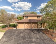13105 Red Drive, Lemont image