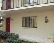 11717 Raintree Village Boulevard Unit A, Temple Terrace image