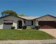 7811 Willow Brook Court, Hudson image
