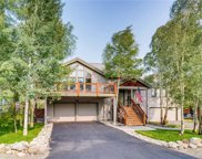 592 Coyote, Silverthorne image
