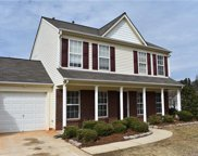 2404  Mulberry Pond Drive, Charlotte image
