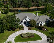 8021 PEBBLE CREEK LN E, Ponte Vedra Beach image