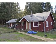 306 HARD CASH  LN, Camas Valley image