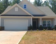 6607  Buck Horn Place, Waxhaw image