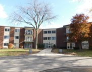 2800 Maple Avenue Unit #32A, Downers Grove image