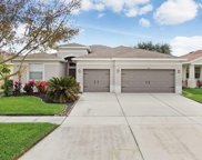 11319 Laurel Brook Court, Riverview image