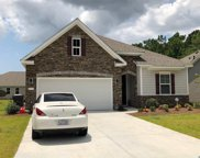 216 Rolling Woods Ct., Little River image