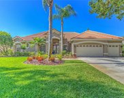 5809 Peach Heather Trail, Valrico image