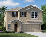 11104 Hudson Hills Lane, Riverview image