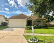 4904 Forest Brook Place, Tampa image