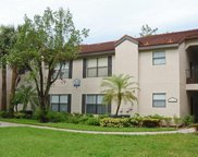 2178 Arbour Walk Cir Unit 2316, Naples image