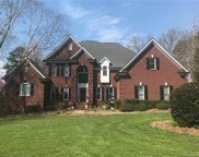 10316  Hanging Moss Trail, Mint Hill image