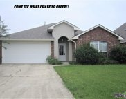 23868 Waterford Ct, Denham Springs image