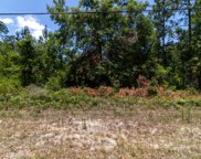 2226 S COCOA AVE, Middleburg image