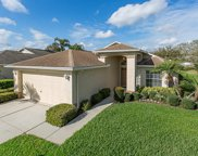 1111 Winding Willow Drive, Trinity image