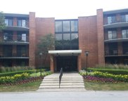1605 East Central Road Unit 307A, Arlington Heights image