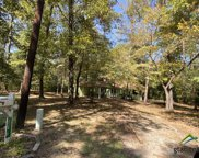 146 MULBERRY CV, Holly Lake Ranch image